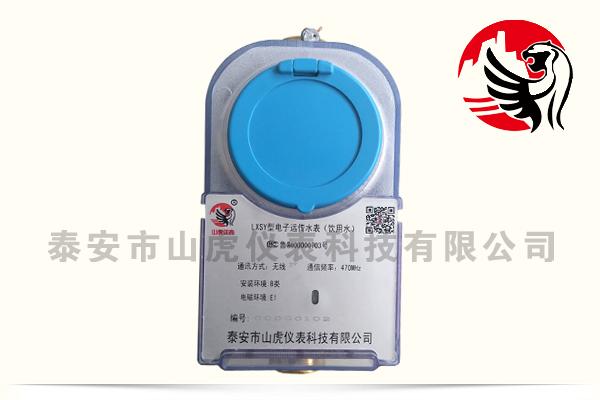 LXSY型电子远传水表(饮用水)2